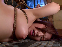 Busty lass in bondage has her cunt throbbed doggy style